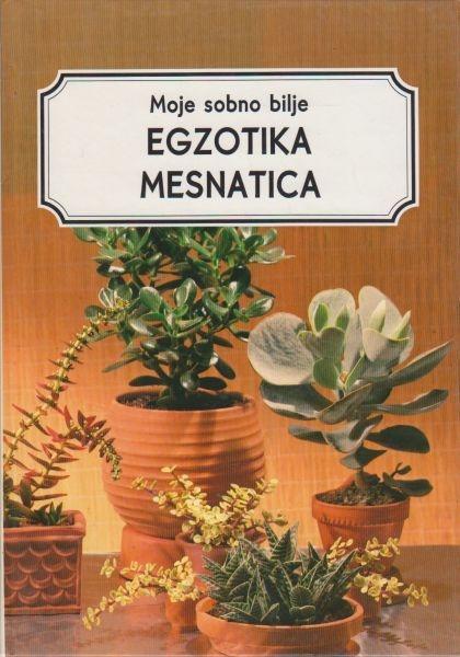 Moje sobno bilje - Egzotika mesnatica