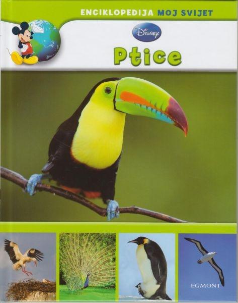 Moj svijet: Ptice