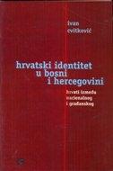 Hrvatski identitet u Bosni i Hercegovini : Hrvati između nacionalnog i građanskog
