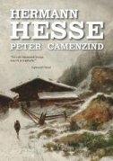 Peter Camenzind : pripovijest