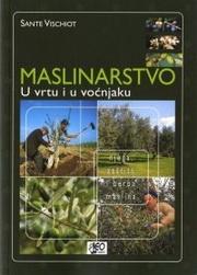 Maslinarstvo u vrtu i u voćnjaku