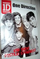 One Direction : kad snovi postaju stvarnost