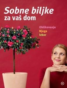 Sobne biljke za vaš dom